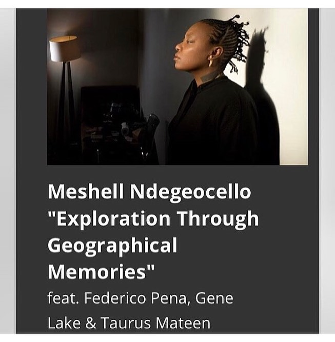 Meshell Ndegeocello at Blues Alley