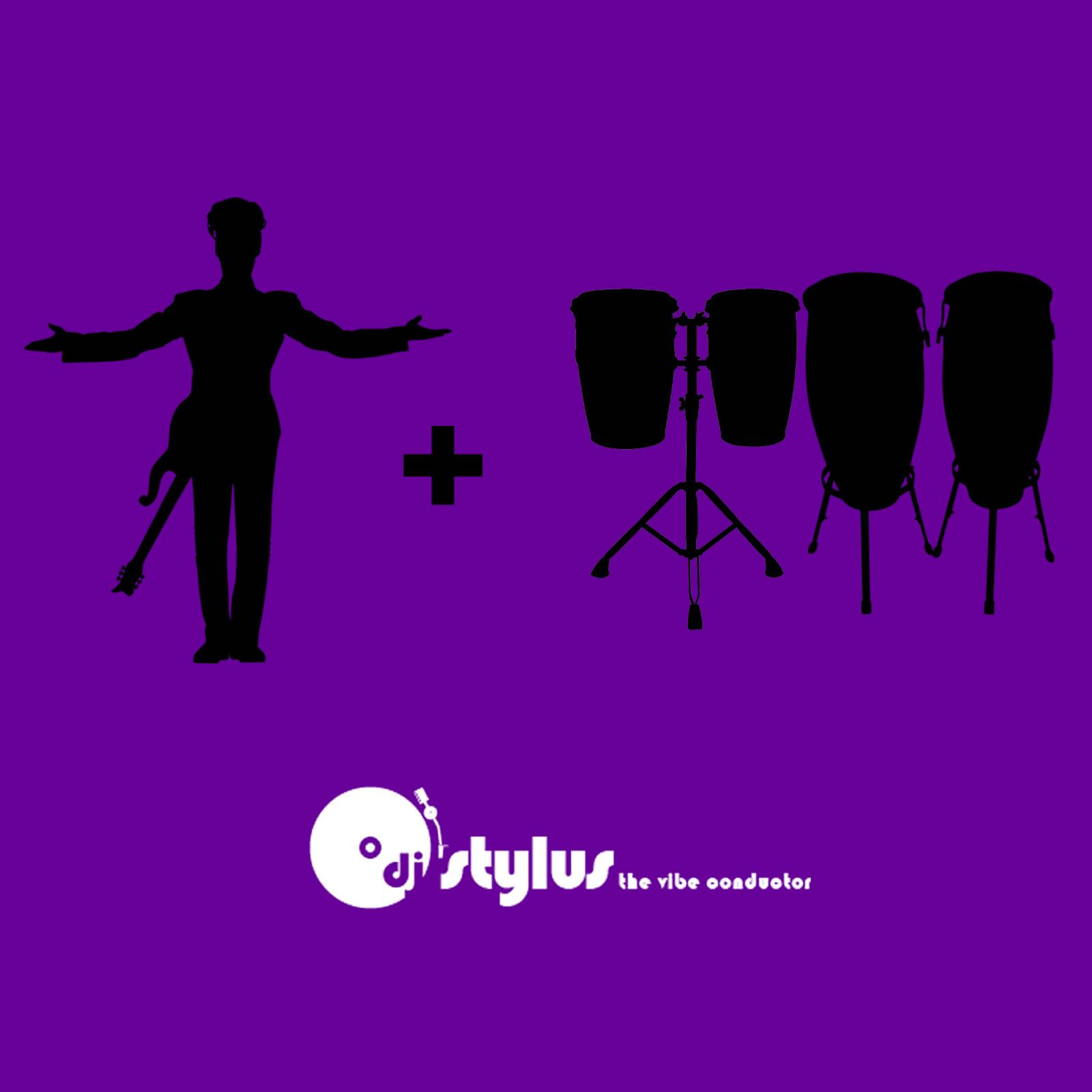 DJ Stylus - The Vibe Conductor - Purple Pockets